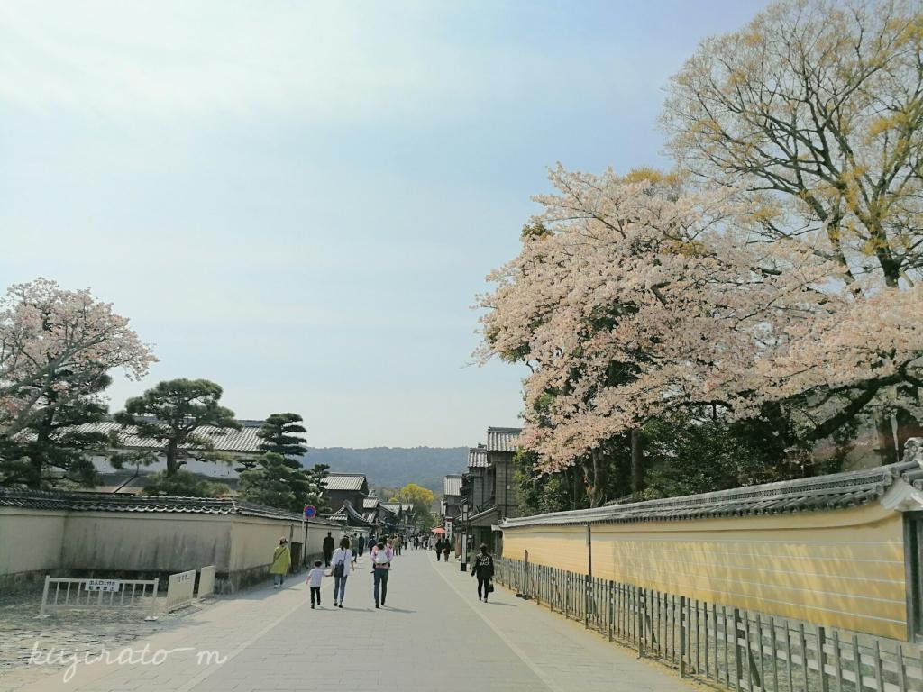 伊勢神宮に向かう道、桜が綺麗で雰囲気があります