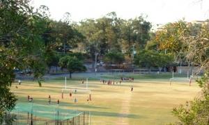 所有する6面のラグビー場はすべて天然芝。