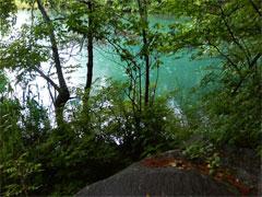 毘沙門沼のコバルトブルーは雨でもキレイです! (^_^)