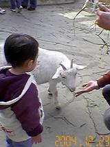 20041223-2