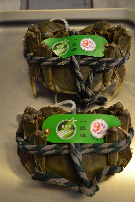 le22octobre crabes1