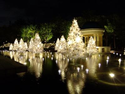 CHRISTMAS TOWN ILLUMINATION Photo2