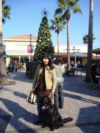 クリスマスの時は綺麗だったね。