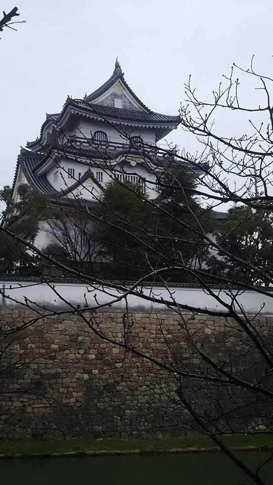 麗しの岸和田城