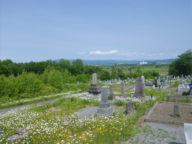 2016墓�