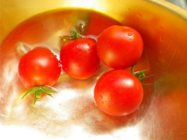 2016トマト�