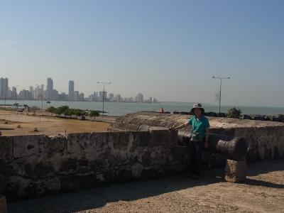 カルタヘナの城壁
