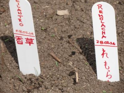 野菜の漢字