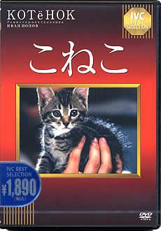 DVD「こねこ」新装版