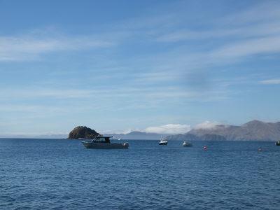 ポイントの海