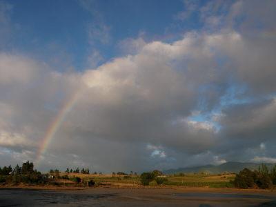 日の出の後の虹