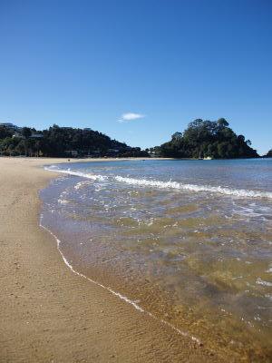 澄んだ海岸