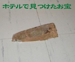 ホテルで見つけたお宝は「木製のドアストッパー」