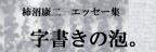 書家/アーティスト 柿沼康二 エッセイ集「字書きの泡。」