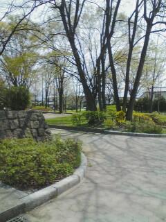 2009-04-19_11-47.jpg