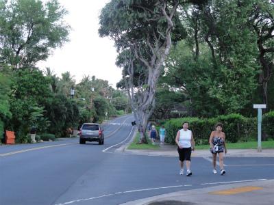 2011年ハワイ旅行全部 223.jpg