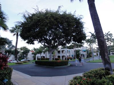 2011年ハワイ旅行全部 094.jpg