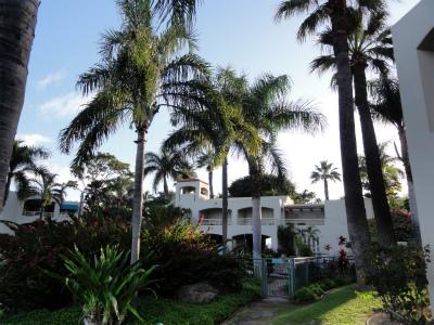 2011年ハワイ旅行全部 263.jpg