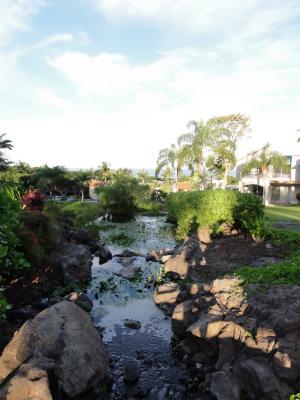 2011年ハワイ旅行全部 266.jpg