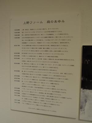2174.JPG