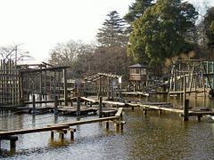 清水公園.jpg