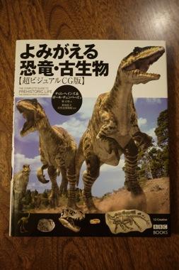 P1170005 のコピー.JPG