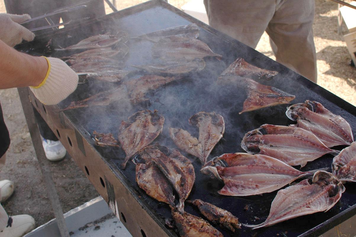 魚ブース2