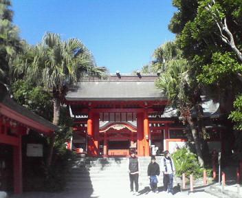 ヤシの木が神木の青島神社。