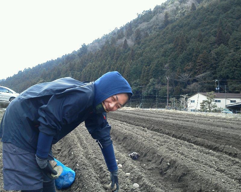 野村氏が植えた。