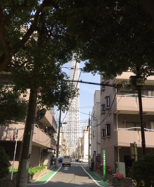 隅田公園からスカツリー