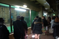 札幌円山動物園スムージアズーナイト