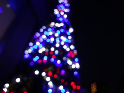 クリスマスツリー 頼藤直秀