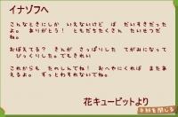 花キューピットからの手紙