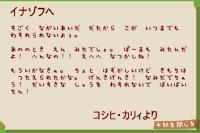 コシヒ・カリィからの手紙