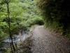 柊野高川林道 始点付近