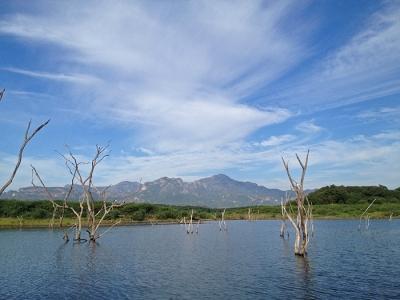2014.メヒコ風景