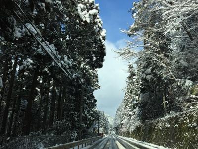 2015.2.1雪画像2