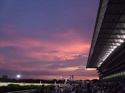 雨の後のピンク空