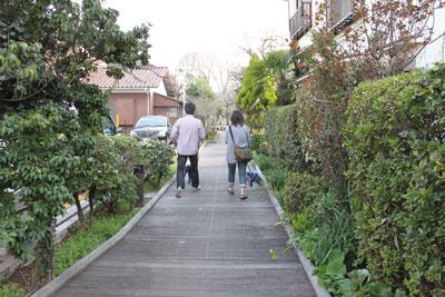 食後の散歩