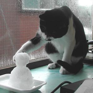 雪3s.jpg