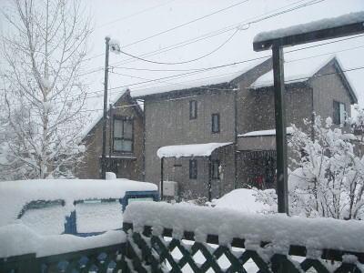 また雪よ〜