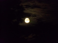 2014年9月薄月のスーパームーン