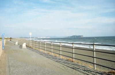 茅ヶ崎から藤沢まで続くサイクリングロード