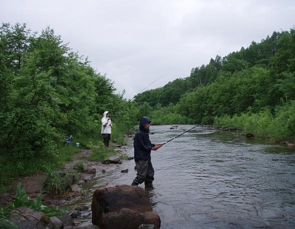尻別川的周邊環境非常得天獨厚!四季都有它迷人的樣子。一起來享受北海道獨特的河邊美景並摘取河邊美麗的野草野花們吧!