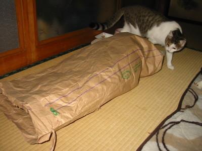 この袋は何