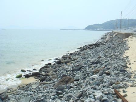 100606ラブアース志賀島海岸04