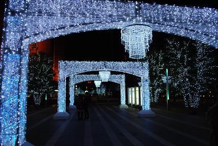 121224クリスマスイルミ24