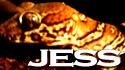 JESSサイド