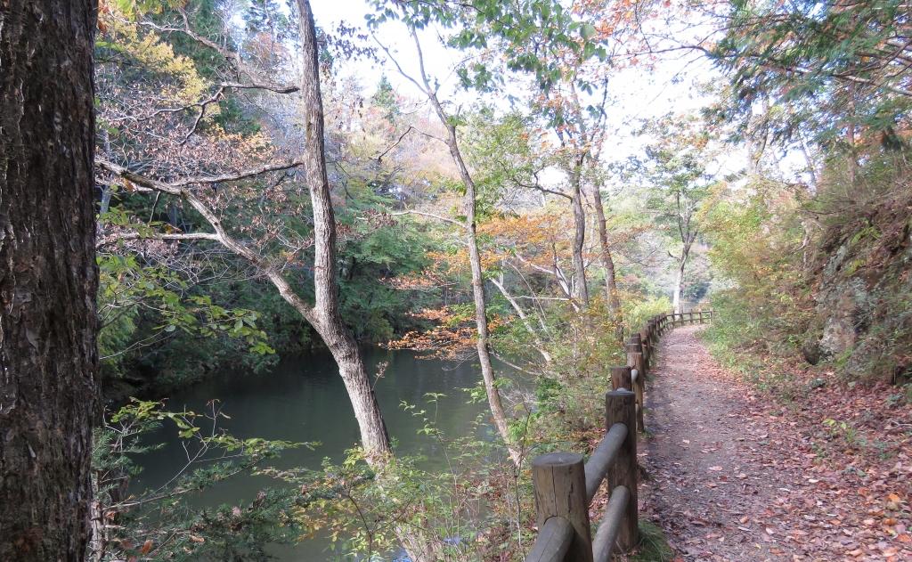 月山池遊歩道