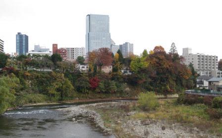 広瀬川沿いの紅葉
